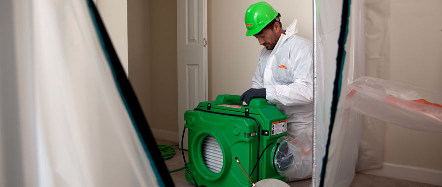 Modesto, CA mold cleanup